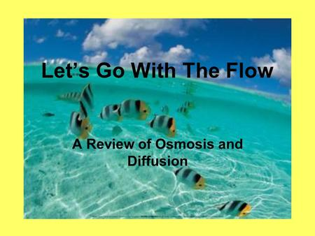 Let's Go With The Flow A Review of Osmosis and Diffusion.