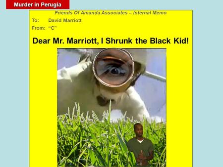 "Murder in Perugia Friends Of Amanda Associates – Internal Memo To: David Marriott From: ""C"" Dear Mr. Marriott, I Shrunk the Black Kid!"