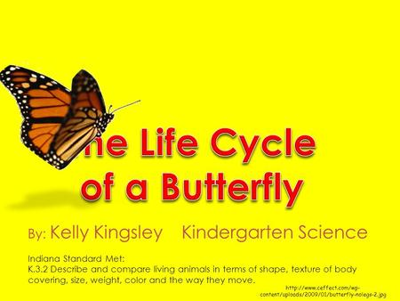 content/uploads/2009/01/butterfly-nolegs-2.jpg By: Kelly Kingsley Kindergarten Science Indiana Standard Met: K.3.2 Describe.