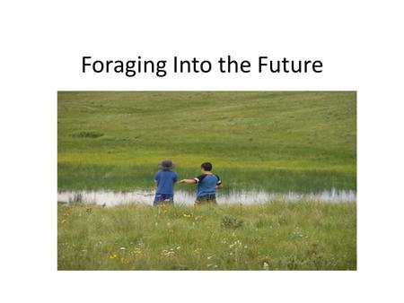 Foraging Into the Future. What this talk is about…. Introduction – who/what are we? What do we do? – our mission Range/pasture EKG Monitoring methods.