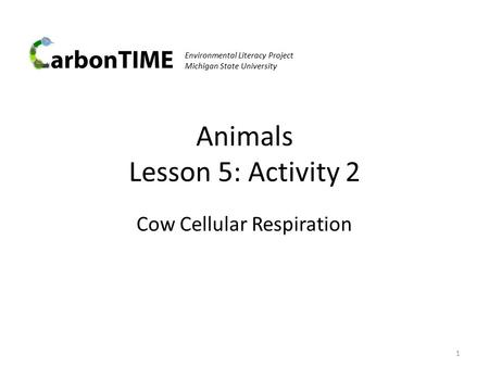 Animals Lesson 5: Activity 2 Cow Cellular Respiration 1 Environmental Literacy Project Michigan State University.