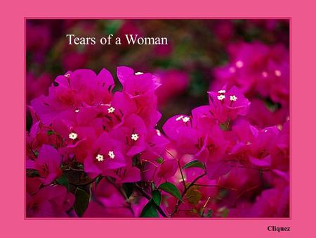 Tears of a Woman Cliquez.