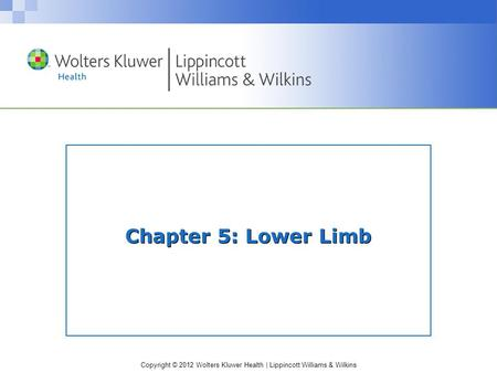 Copyright © 2012 Wolters Kluwer Health | Lippincott Williams & Wilkins Chapter 5: Lower Limb.