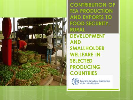 CONTRIBUTION OF TEA PRODUCTION AND EXPORTS TO FOOD SECURITY, RURAL DEVELOPMENT AND SMALLHOLDER WELLFARE IN SELECTED PRODUCING COUNTRIES.