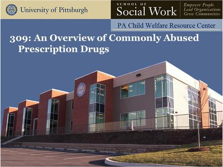 309: An Overview of Commonly Abused Prescription Drugs.