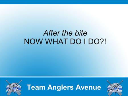 Team Anglers Avenue After the bite NOW WHAT DO I DO?!