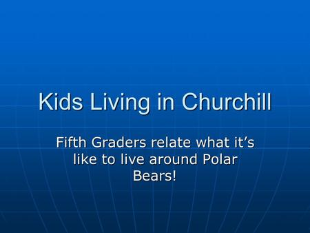 Kids Living in Churchill Fifth Graders relate what it's like to live around Polar Bears!