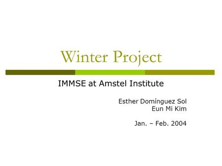 Winter Project IMMSE at Amstel Institute Esther Domínguez Sol Eun Mi Kim Jan. – Feb. 2004.