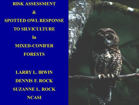 RISK ASSESSMENT & SPOTTED OWL RESPONSE TO SILVICULTURE In MIXED-CONIFER FORESTS LARRY L. IRWIN DENNIS F. ROCK SUZANNE L. ROCK NCASI.