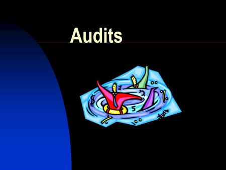 Audits. Overview of Audit Program Purpose Documentation to Maintain How to Prepare for an Audit.