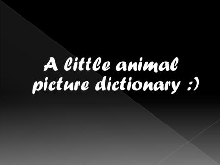 A little animal picture dictionary :).