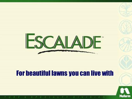 T U R F & S P E C I A L T Y D I V I S I O N For beautiful lawns you can live with.