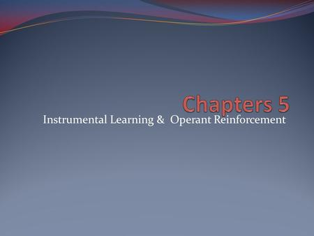 Instrumental Learning & Operant Reinforcement