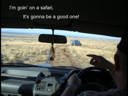I'm goin' on a safari, It's gonna be a good one!