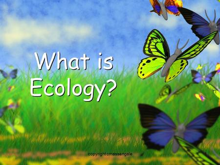 1 What is Ecology? copyright cmassengale. 2 Organisms and Their Environment copyright cmassengale.