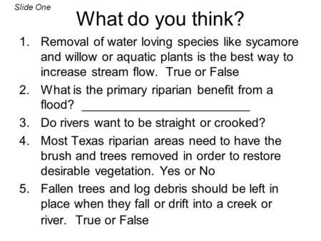 What do you think? 1.Removal of water loving species like sycamore and willow or aquatic plants is the best way to increase stream flow. True or False.