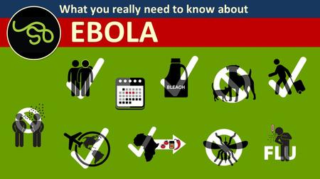What you really need to know about EBOLA. What you really need to know about EBOLA Your dog or cat is not spreading Ebola. There have been no reports.