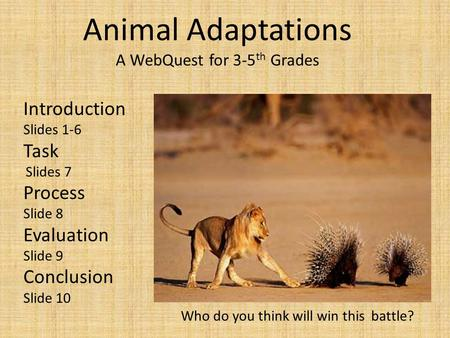 Animal Adaptations A WebQuest for 3-5 th Grades Introduction Slides 1-6 Task Slides 7 Process Slide 8 Evaluation Slide 9 Conclusion Slide 10 Who do you.