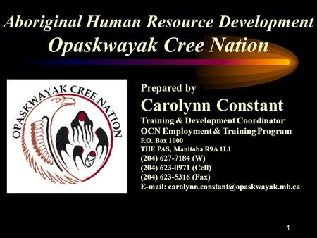 1 Aboriginal Human Resource Development Opaskwayak Cree Nation Prepared by Carolynn Constant Training & Development Coordinator OCN Employment & Training.