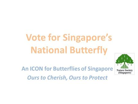 Vote for Singapore's National Butterfly