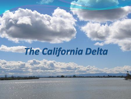 Delta Facts Major Cities Partly Within the Delta: Sacramento, Stockton, West Sacramento, Oakley, and Rio Vista.