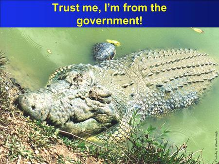 Trust me, I'm from the government! Photo by D Wansbrough.