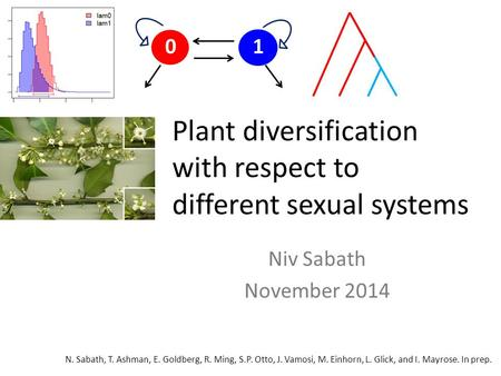 Plant diversification with respect to different sexual systems