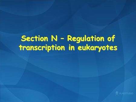 Section N – Regulation of transcription in eukaryotes