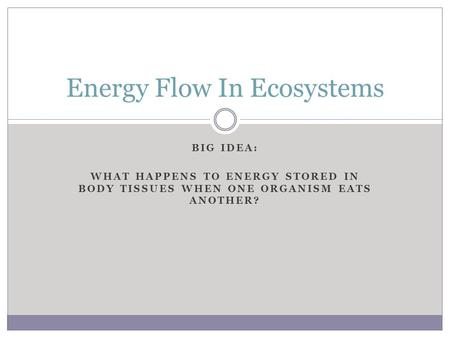 BIG IDEA: WHAT HAPPENS TO ENERGY STORED IN BODY TISSUES WHEN ONE ORGANISM EATS ANOTHER? Energy Flow In Ecosystems.