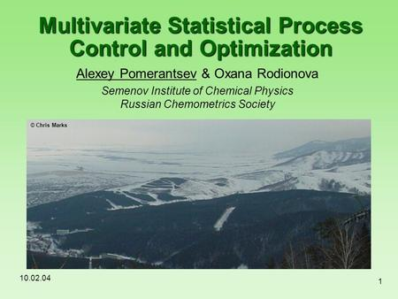 10.02.04 1 Multivariate Statistical Process Control and Optimization Alexey Pomerantsev & Oxana Rodionova Semenov Institute of Chemical Physics Russian.
