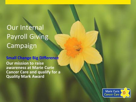 Our Internal Payroll Giving Campaign