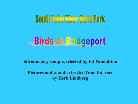 Introductory sample, selected by Ed Pandolfino Pictures and sound extracted from Internet by Herb Lindberg Birds at Bridgep ort.