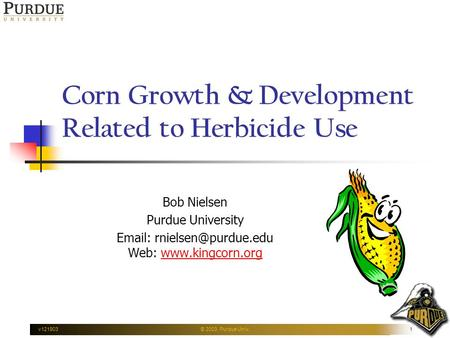 V121903© 2003, Purdue Univ.1 Corn Growth & Development Related to Herbicide Use Bob Nielsen Purdue University   Web: