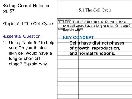 4.2 Overview of Photosynthesis Set up Cornell Notes on pg. 57 Topic: 5.1 The Cell Cycle Essential Question: 1.Using Table 5.2 to help you: Do you think.
