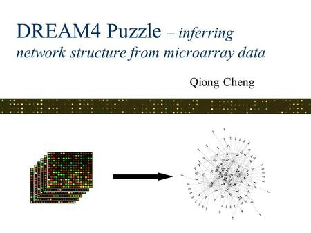 DREAM4 Puzzle – inferring network structure from microarray data Qiong Cheng.