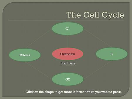 Overview G2 S G1 Mitosis Click on the shape to get more information (if you want to pass). Start here.