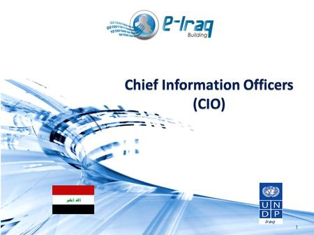 Chief Information Officers (CIO)