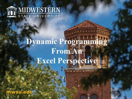 Dynamic Programming From An Excel Perspective. Dynamic Programming From An Excel Perspective Ranette Halverson, Richard Simpson Catherine Stringfellow.