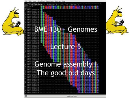 BME 130 – Genomes Lecture 5 Genome assembly I The good old days.