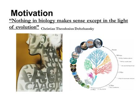 "Motivation ""Nothing in biology makes sense except in the light of evolution"" Christian Theodosius Dobzhansky."