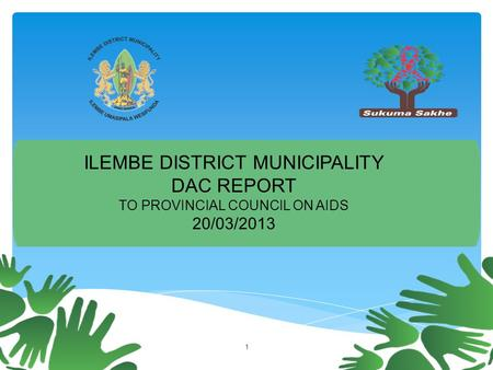OPERATION 1 ILEMBE DISTRICT MUNICIPALITY DAC REPORT TO PROVINCIAL COUNCIL ON AIDS 20/03/2013.