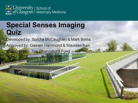 Special Senses Imaging Quiz Developed by: Sorcha McCaughley & Mark Brims Approved by: Gawain Hammond & Maureen Bain Supported by: The Chancellor's Fund.