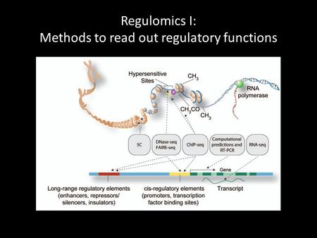 Regulomics I: Methods to read out regulatory functions.