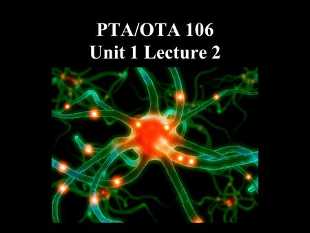 PTA/OTA 106 Unit 1 Lecture 2. Introduction to the Endocrine System.