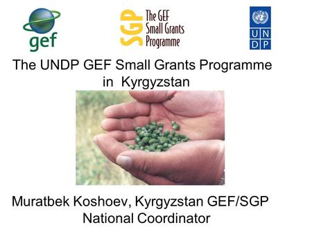 The UNDP GEF Small Grants Programme in Kyrgyzstan Muratbek Koshoev, Kyrgyzstan GEF/SGP National Coordinator.