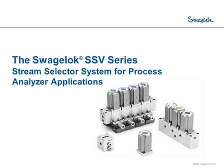 © 2006 Swagelok Company The Swagelok ® SSV Series Stream Selector System for Process Analyzer Applications.