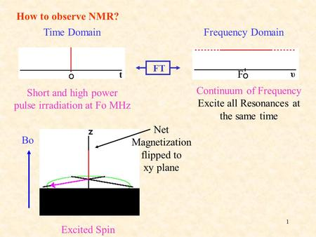 1 How to observe NMR? Excited Spin Bo Net Magnetization flipped to xy plane t FT Short and high power pulse irradiation at Fo MHz Continuum of Frequency.