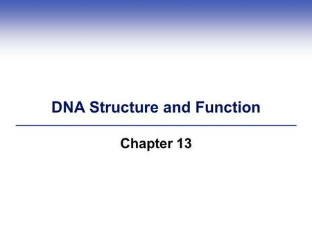DNA Structure and Function Chapter 13. DNA Deoxyribonucleic Acid.