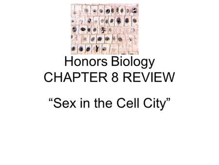 "Honors Biology CHAPTER 8 REVIEW ""Sex in the Cell City"""