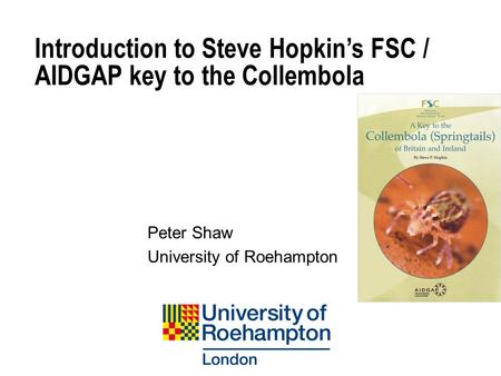 Introduction to Steve Hopkin's FSC / AIDGAP key to the Collembola Peter Shaw University of Roehampton.